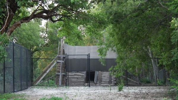 Sharrock Cabin